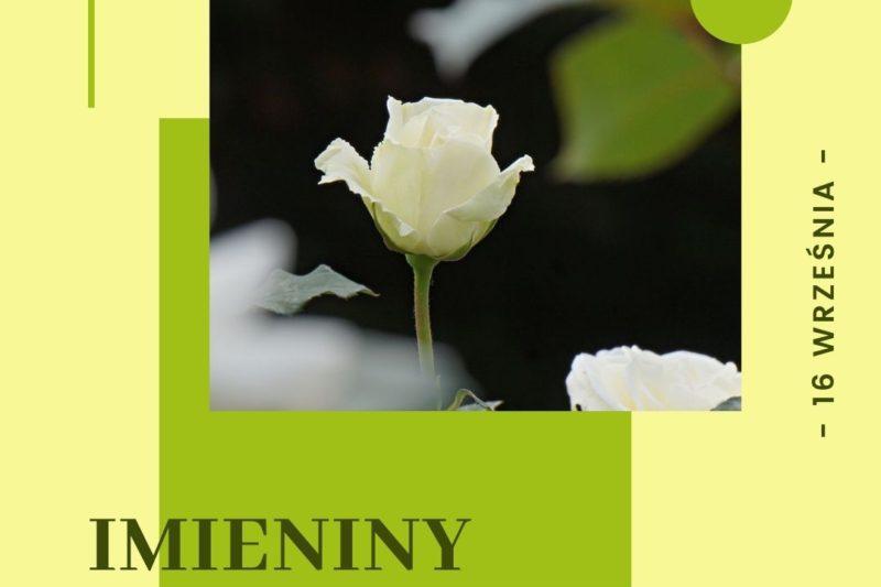 16 września – Imieniny s.Dulcissimy